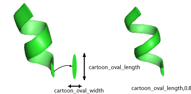 Cartoon oval length.png
