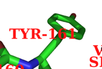 PyMol Labels