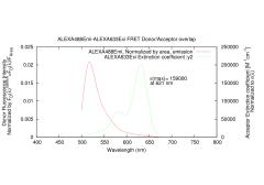 Index of /images/thumb/7/7d/2-ALEXA488Emi-ALEXA633Exi-overlap